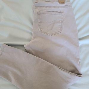 Gray Jag skinny jeans